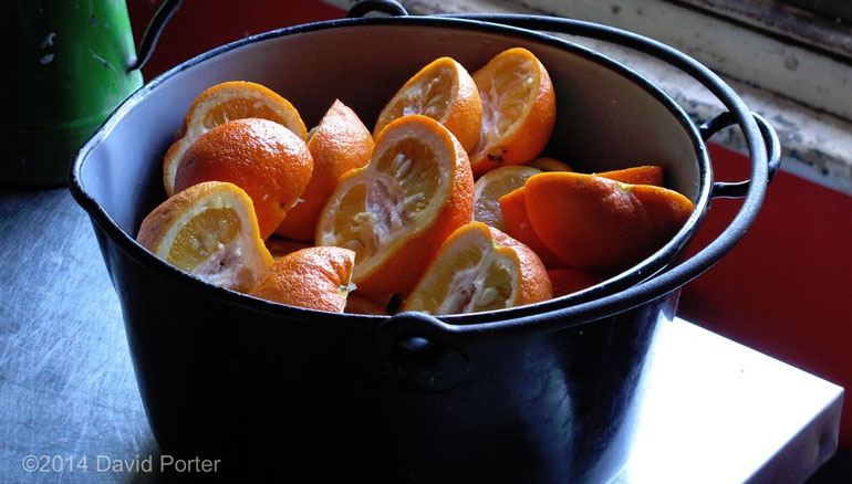 Oranges in pot