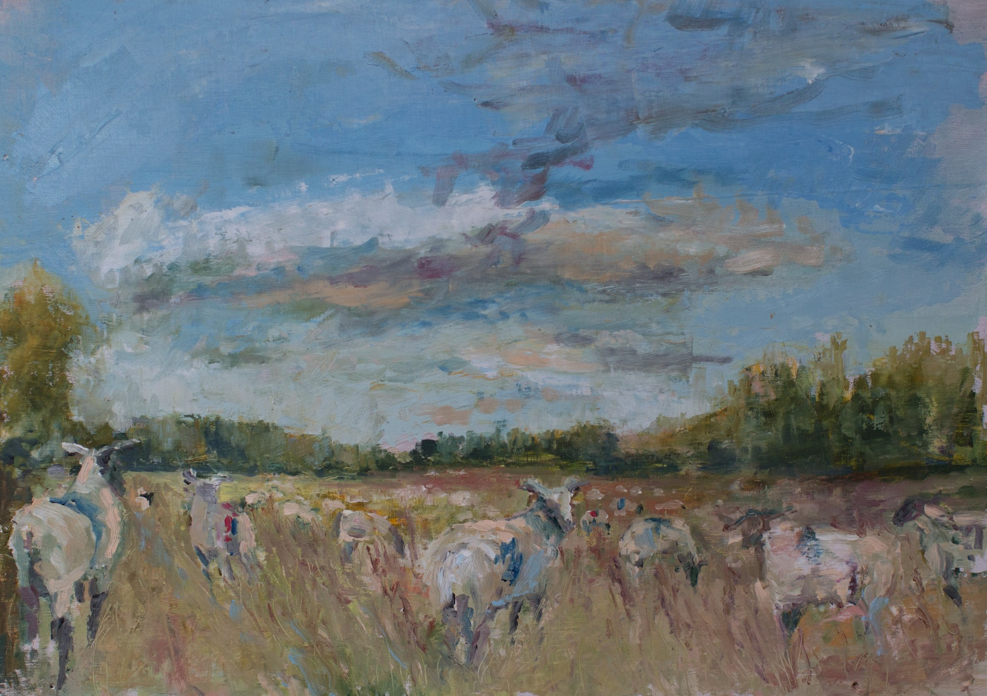Sheep along the Church Road oil on board