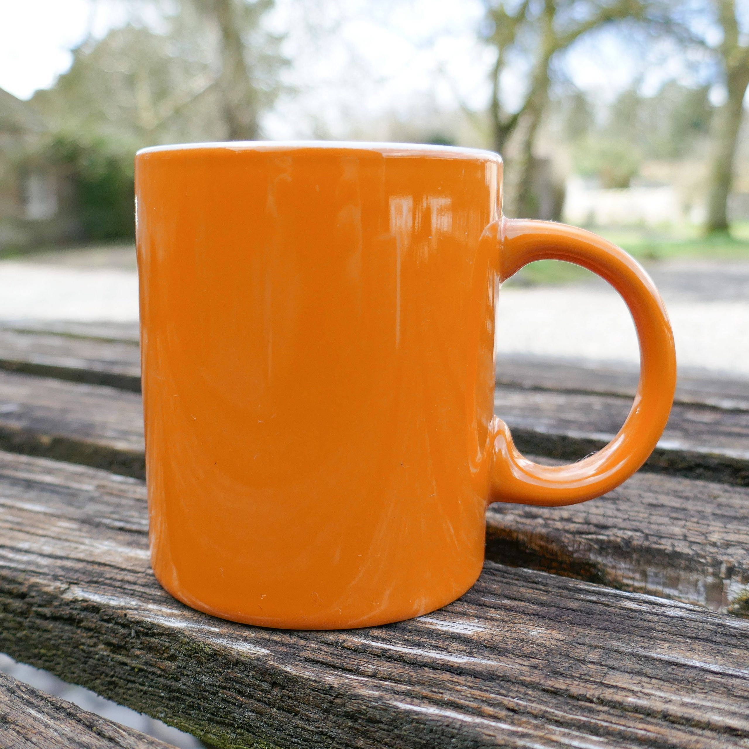 Dalemain Orange Mug