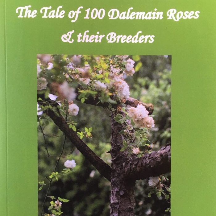 The Tale of 100 Dalemain Roses & their Breeders