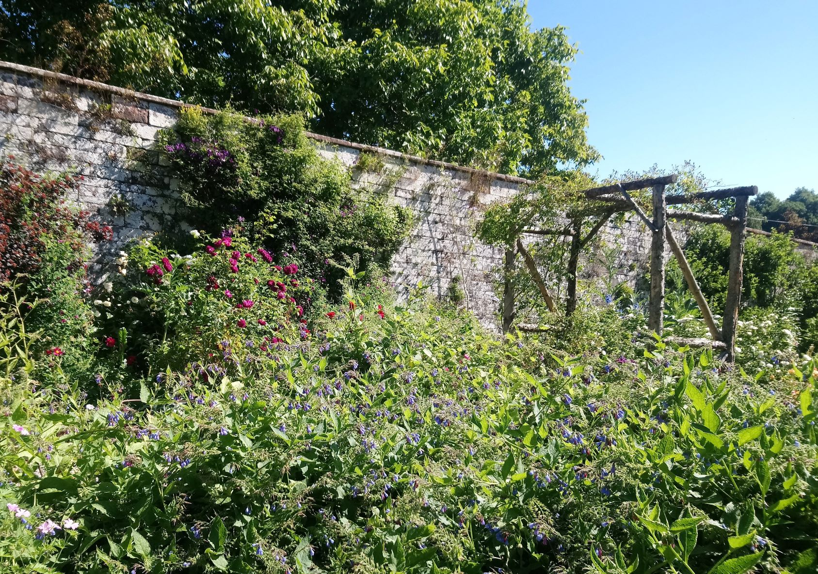 The Walled Gardens in colour